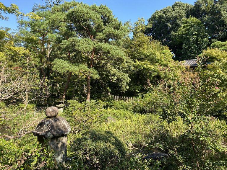 茶室が点在する根津美術館の庭園。