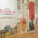 ボタニカルアートの世界 『キューガーデン 英国王室が愛した花々 シャーロット王妃とボタニカルアート』精緻なる科学的視点と美しさを併せ持つ展覧会