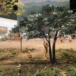 東京の土器や土偶が大集合!江戸東京博物館の『縄文2021―東京に生きた縄文人―』で知る縄文の人々の暮らし